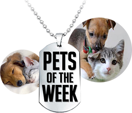 pets of the week logo