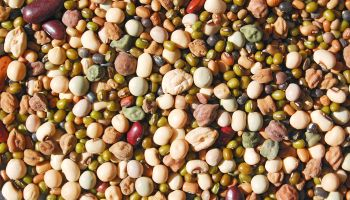 Whole mix Grains & Beans