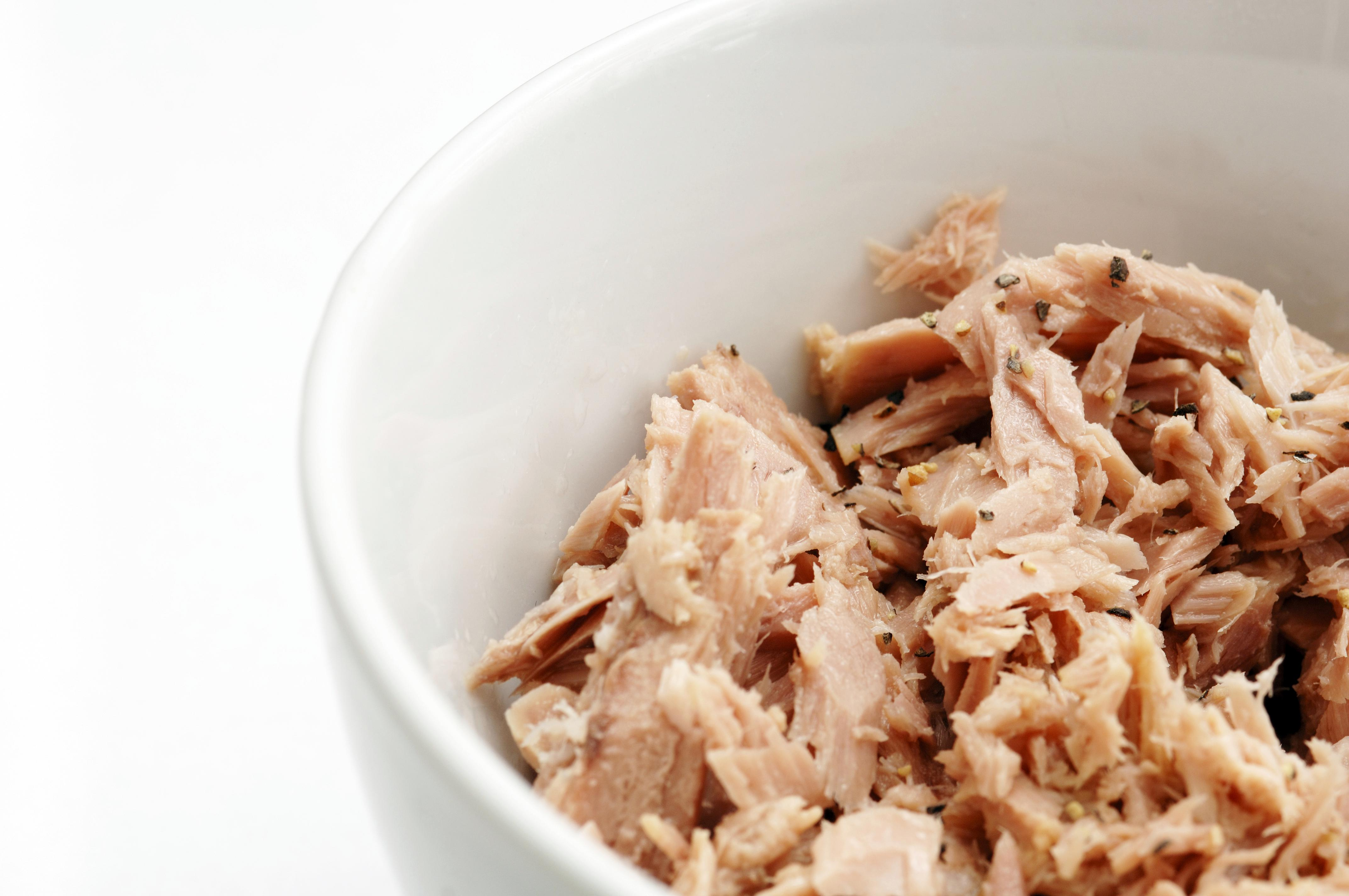Flaked tuna fish in bowl