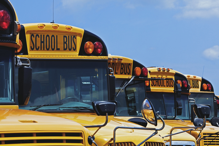 Yellow school buses parked diagonally